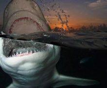А вы боитесь глубины?