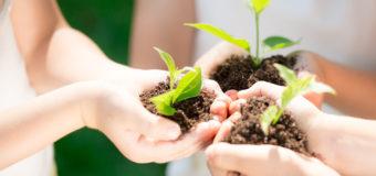 5 июня — день эколога