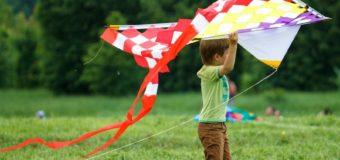 15 июня — Всемирный день ветра (видео)