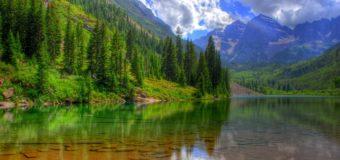 Меморандум о сохранении байкальских лесов подпишут в Приангарье