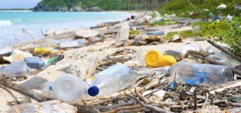 Страны Европы начали вводить запрет на использование одноразовой пластиковой посуды и ватных палочек