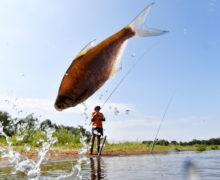 В Чечне ежегодно будет проходить рыболовный фестиваль для развития внутреннего туризма
