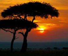 Фото дня: рассвет в Кении