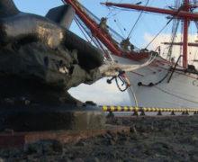 «Седов» ушел с Ямала. Следующий порт — Мурманск