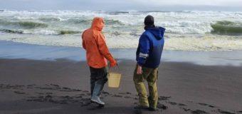 В Тихий океан попали ядовитые отходы
