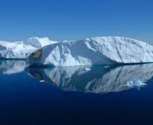 В Антарктиде появились обыкновенные комары