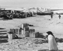 Здравствуй, Антарктида! К 65-летию первой советской антарктической экспедиции