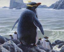 Археологи обнаружили в Антарктиде древние останки огромного пингвина