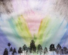 Объявлен всероссийский конкурс детского рисунка «Открой Арктику!»