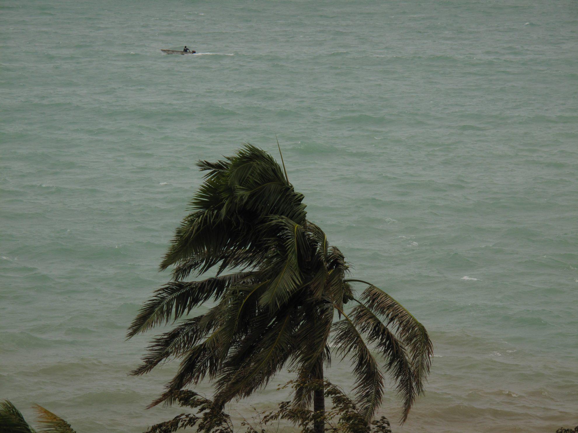 Damage done by Cyclone Ivy as it swept passed Port Vila, Vanuatu, 2011