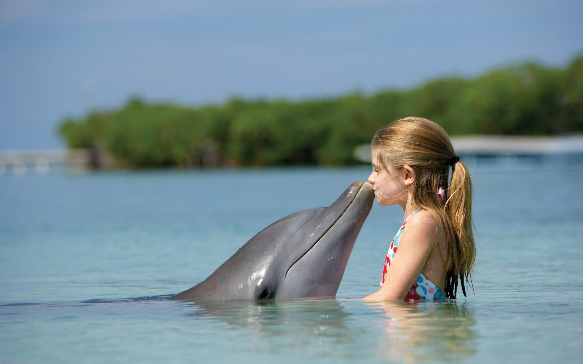 Девочка и дельфин.