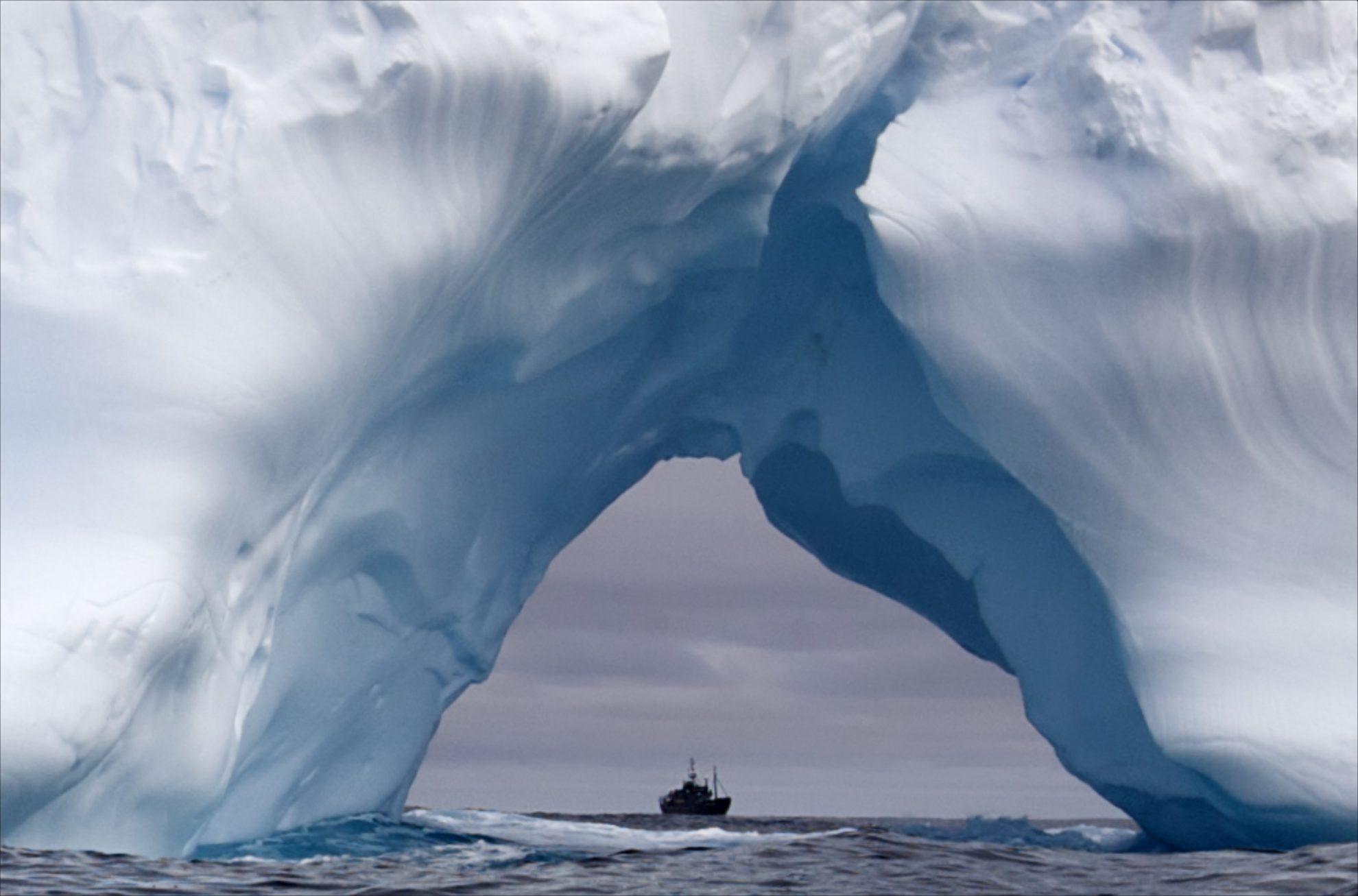 Айсберг в океане. Фотограф  Steve Irwin