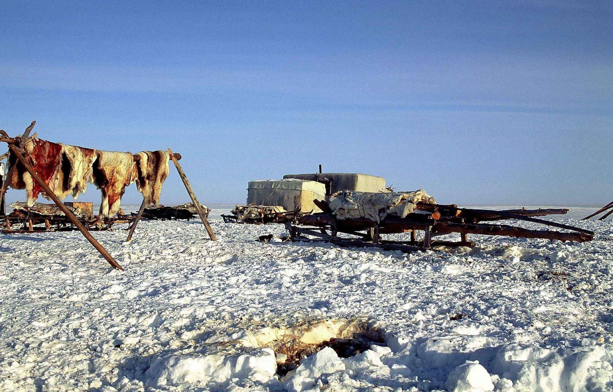 Промысел жителей побережья Северного ледовитого океана.