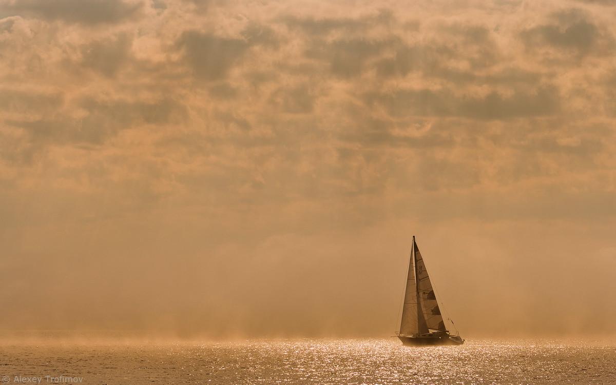 Солнечный ветер. Фотограф: Александр Трофимов