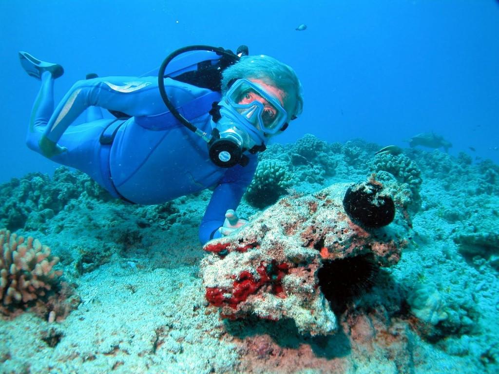 Jean-Michel Cousteau's Ocean Futures Society