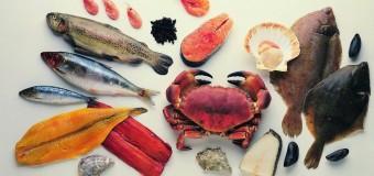 Такие полезные и опасные морепродукты