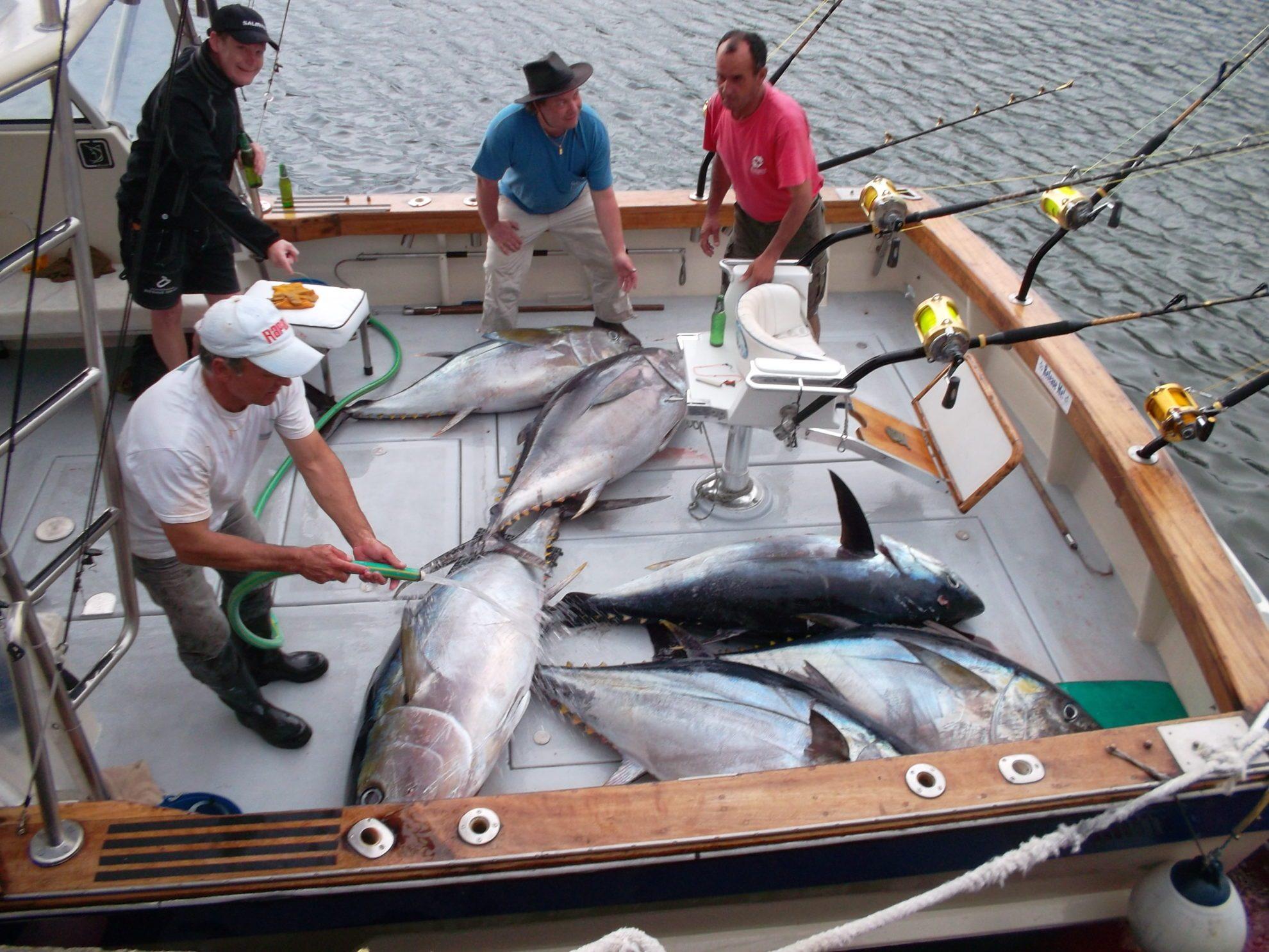 Морская спортивная рыбалка. Азорские острова, Сан-Мигел, Понта-Делгада.