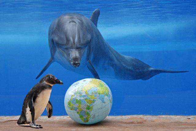 Vsemirnyj-den-okeanov