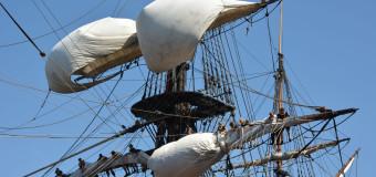 Sail Amsterdam – крупнейший парусный фестиваль