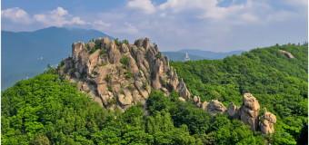Динозаврами и рыбалкой привлекут туристов из Китая