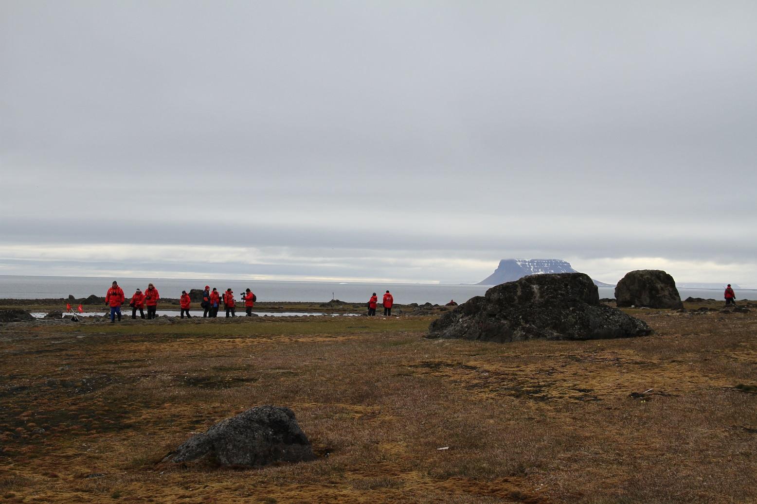 Прогулка по мысу Флора острова Нортбрука. Фото - Юлия Петрова