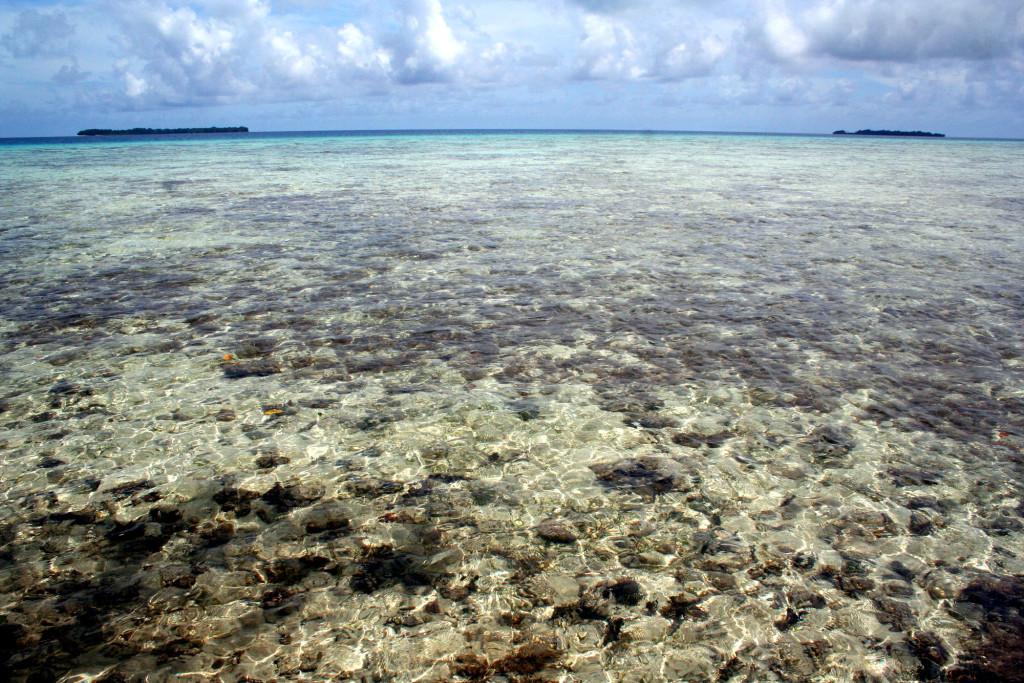 Райский уголок Микронезии: прозрачная вода, рифы, зелёные заросли островов…