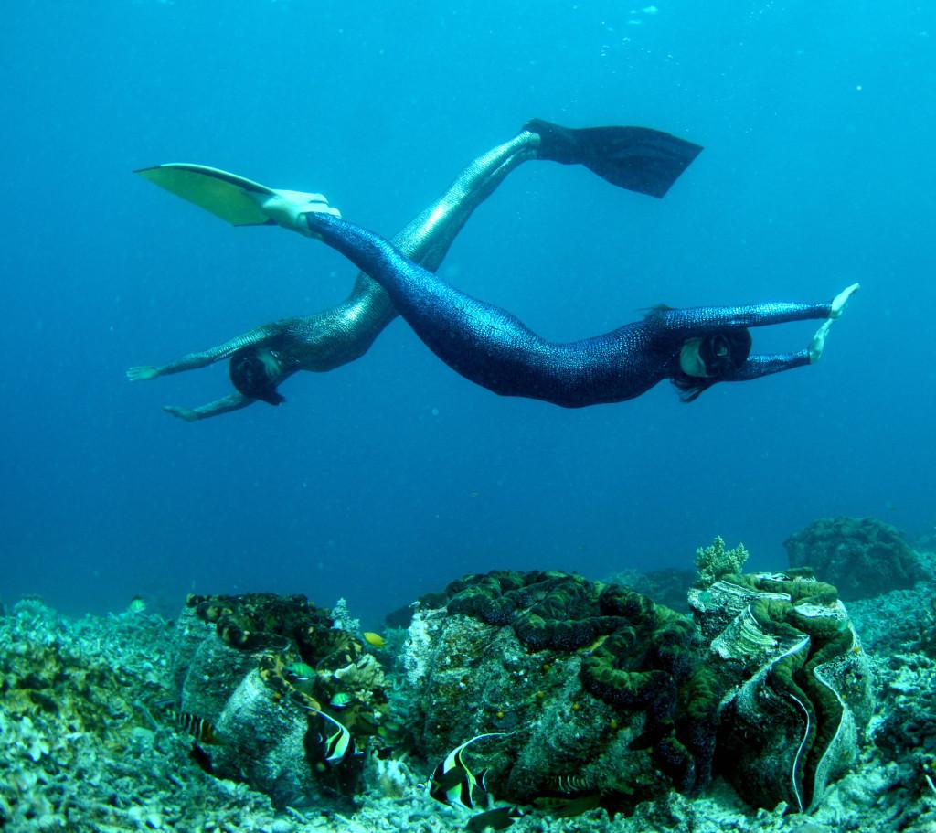 Мало кому доводилось видеть столь фантастическое зрелище: русалки над тридакнами!