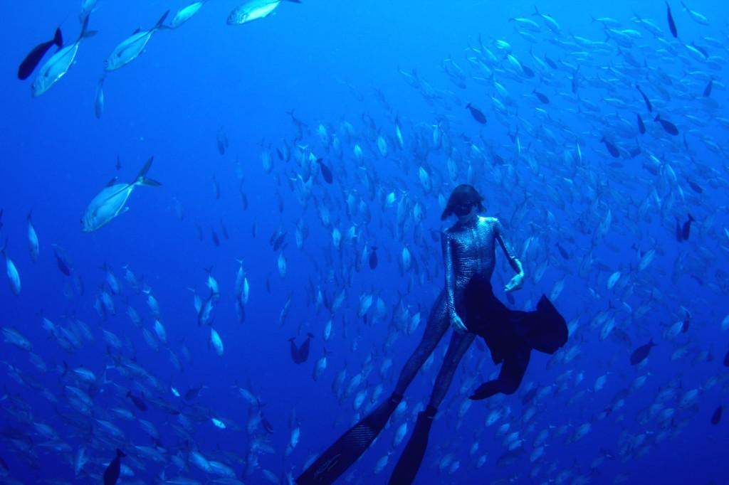 В гармонии с Океаном…