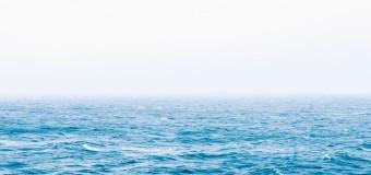 В Азовском море растет уровень соли