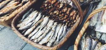 В Сахалине разрешат беспрепятственно вылавливать рыбу