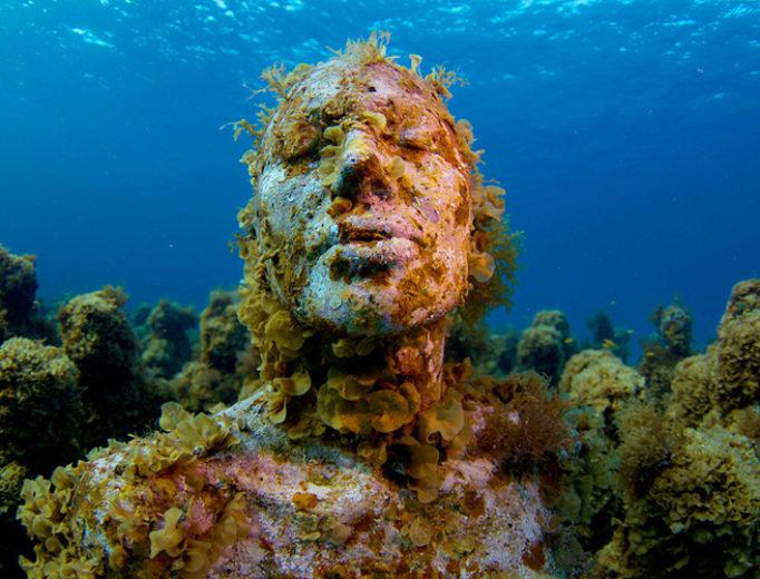 национальный водный парк канкун ocean media