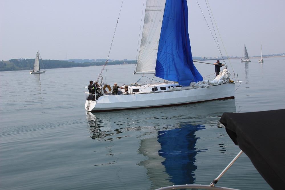 regatta-parusnoe-leto-2016-ocean-media