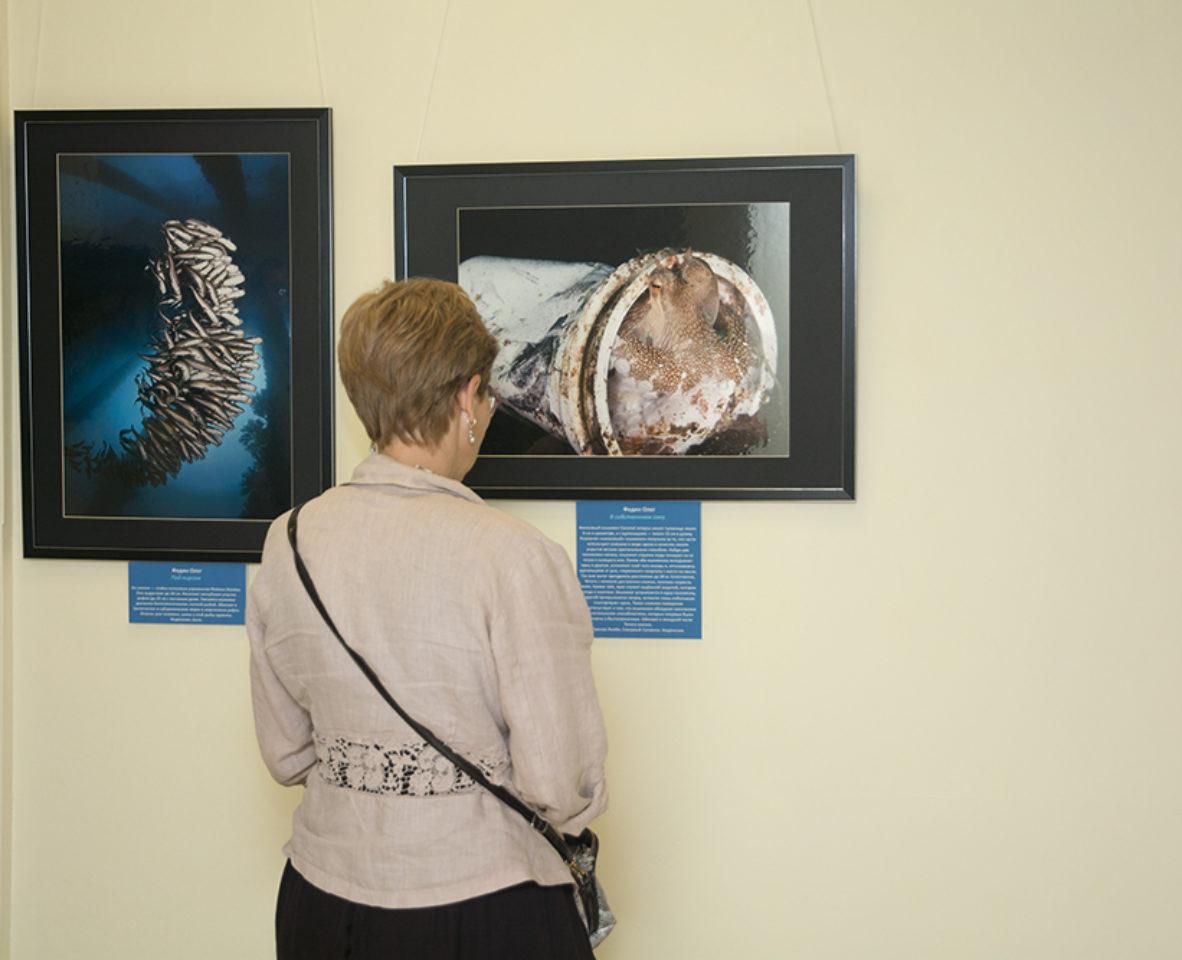 В Дарвинском музее открылась фотовыставка