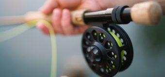 Спортивное рыболовство претендует на включение в программу Олимпиады