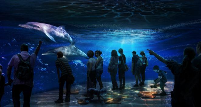 ocean-encout 2