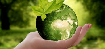5 июня – Всемирный день окружающей среды
