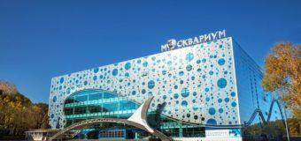 «Москвариум» на ВДНХ приготовил праздничную программу в честь Всемирного дня моря