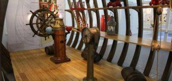 Дни Антарктиды в Северном морском музее