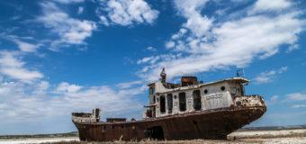На дне Аральского моря высадят деревья