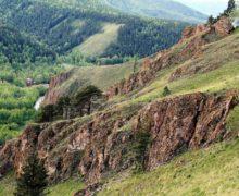 Древние морские организмы признаны памятником природы в Красноярском крае