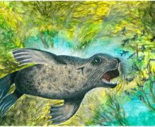 Итоги творческого конкурса Приморского океанариума