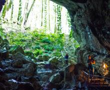 В Сочи в пещере обнаружен редчайший моллюск