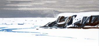 """Новая книга: """"Загадки и трагедии Арктики"""""""