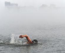 Морж из Хакасии проплыл 35 километров