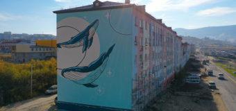 В Магадане в бухне Нагаева «поселилась» семья китов