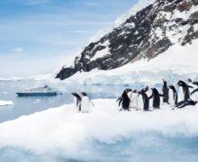 РГО проведет открытый урок по географии с включениями из разных концом света