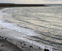 Глава Росгидромета сообщил, что взятые на Камчатке пробы воды чистые
