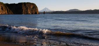 Красный прилив ушел с Камчатки и до следующей осени не появится