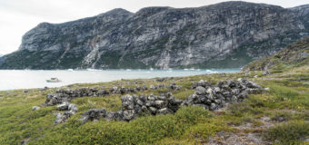 В Гренландии нашли челюсть возрастом 215 млн лет
