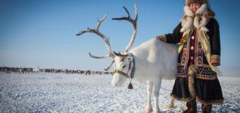 В Якутии объявлен фотоконкурс «Арктика глазами детей»